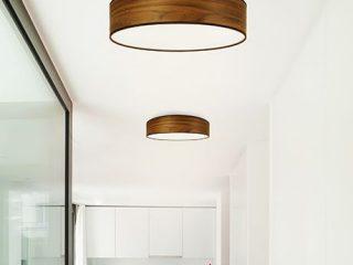 corpuri de iluminat pentru tavan