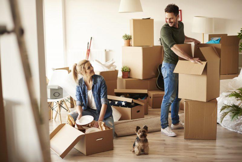 mutare intr-o casa noua